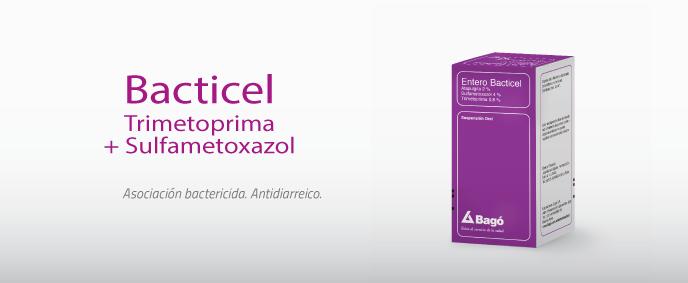 Laboratorios Bagó Entero Bacticel suspensión